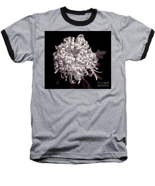 Chrysanthenmum 'satin Ribbon' Baseball T-Shirt