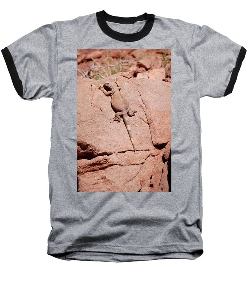 Chuckwalla, Sauromalus Ater Baseball T-Shirt