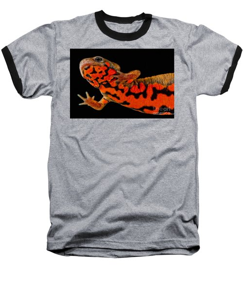 Chuxiong Fire Belly Newt Baseball T-Shirt by Dant� Fenolio