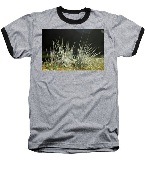 Close-up Of Dew On Grass, In A Sunny, Humid Autumn Morning Baseball T-Shirt