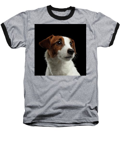Closeup Portrait Of Jack Russell Terrier Dog On Black Baseball T-Shirt by Sergey Taran