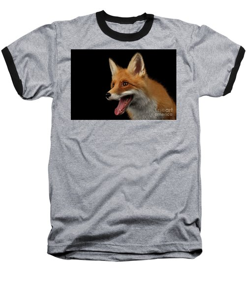 Closeup Portrait Of Smiled Red Fox Isolated On Black  Baseball T-Shirt by Sergey Taran
