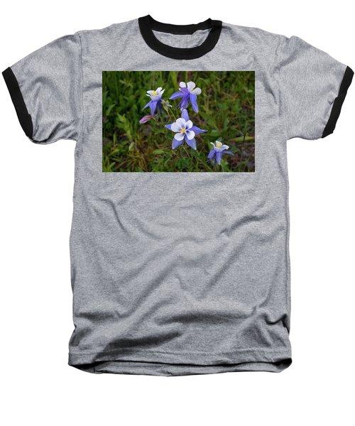 Colorado Columbine Baseball T-Shirt by Steve Stuller