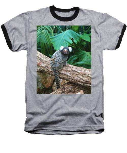 Commonmarmoset  Baseball T-Shirt