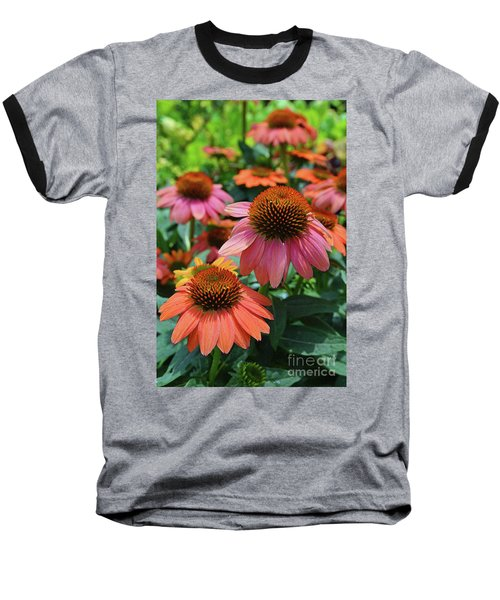 Cone Flower Baseball T-Shirt by Eva Kaufman