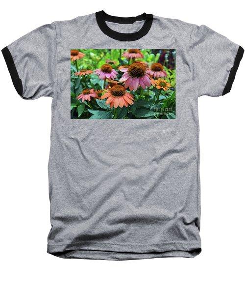Coneflower  Baseball T-Shirt by Eva Kaufman