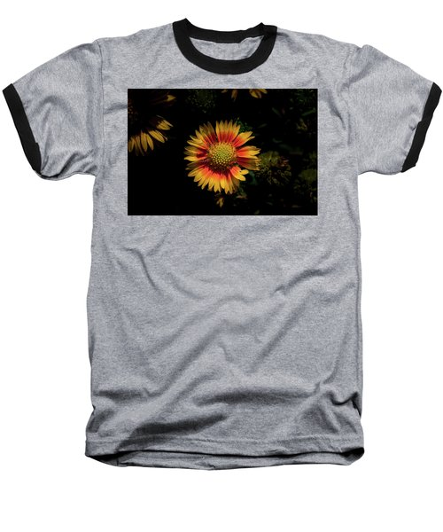 Baseball T-Shirt featuring the photograph Coneflower by Jay Stockhaus