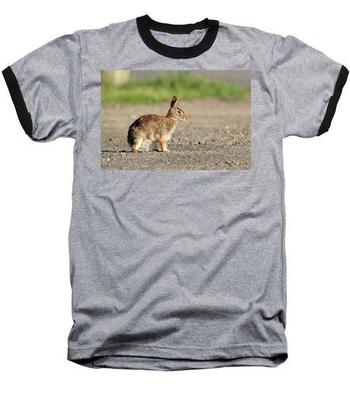 Cottontail Rabbit Stony Brook New York Baseball T-Shirt