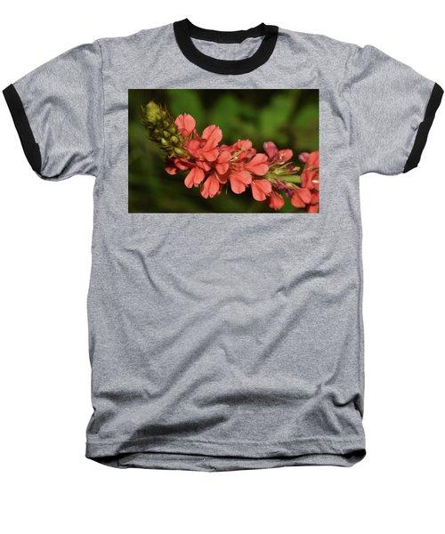 Creeping Indigo - Indigofera Spicata Baseball T-Shirt