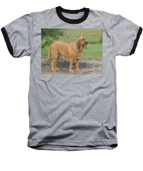 Cujo At The Park Baseball T-Shirt