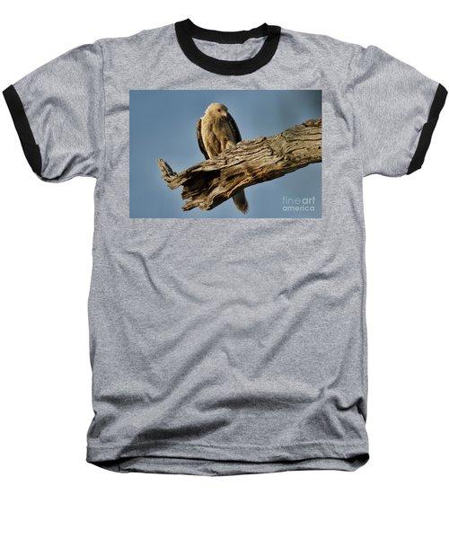 Baseball T-Shirt featuring the photograph Curious by Douglas Barnard