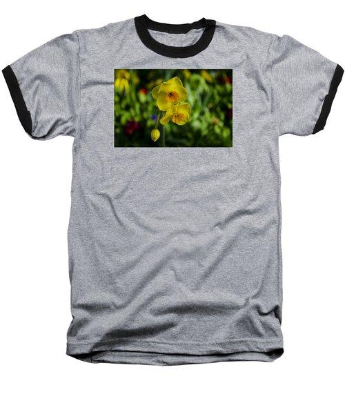Daffodils Baseball T-Shirt by Dan Hefle