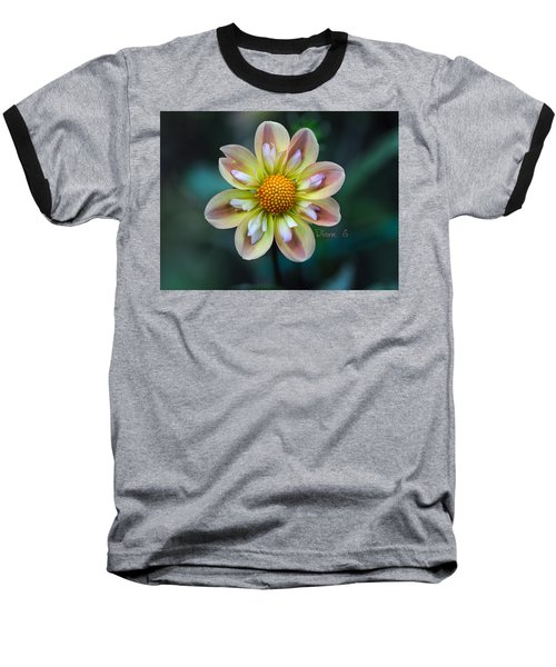 Dahlia Baseball T-Shirt by Diane Giurco