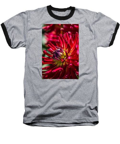 Dalhia Baseball T-Shirt
