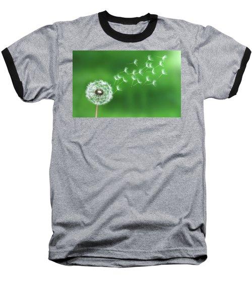 Dandelion Seeds Baseball T-Shirt by Bess Hamiti