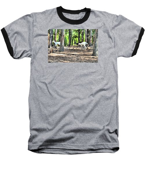 Deer In The Woods Baseball T-Shirt by James Potts