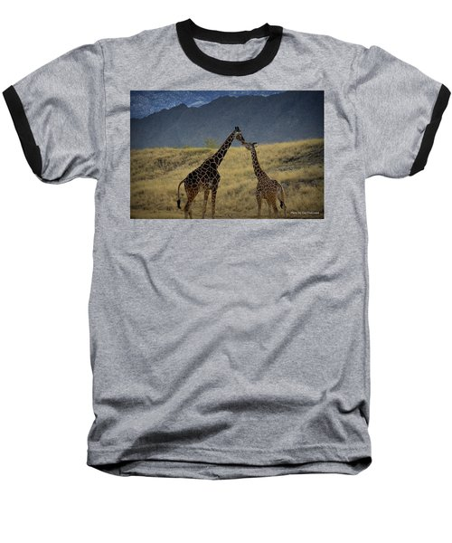 Desert Palm Giraffe 001 Baseball T-Shirt by Guy Hoffman