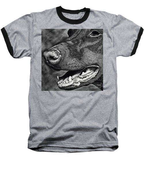 Doberman Face Baseball T-Shirt by Terri Mills