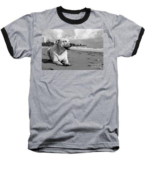 Dog - Monochrome 5  Baseball T-Shirt