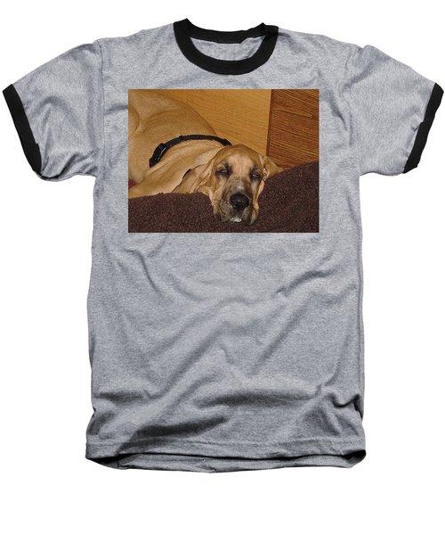Dog Tired Baseball T-Shirt by Val Oconnor