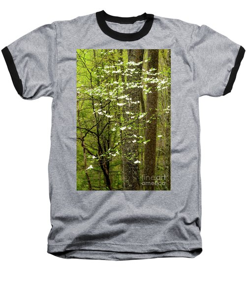 Dogwood Blooming In Forest Baseball T-Shirt