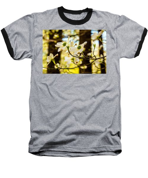 Dogwood Day Afternoon Baseball T-Shirt by John Harding