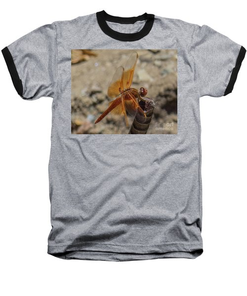 Dragonfly 18 Baseball T-Shirt