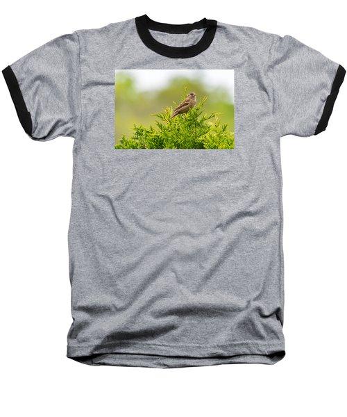 Dunnok Baseball T-Shirt