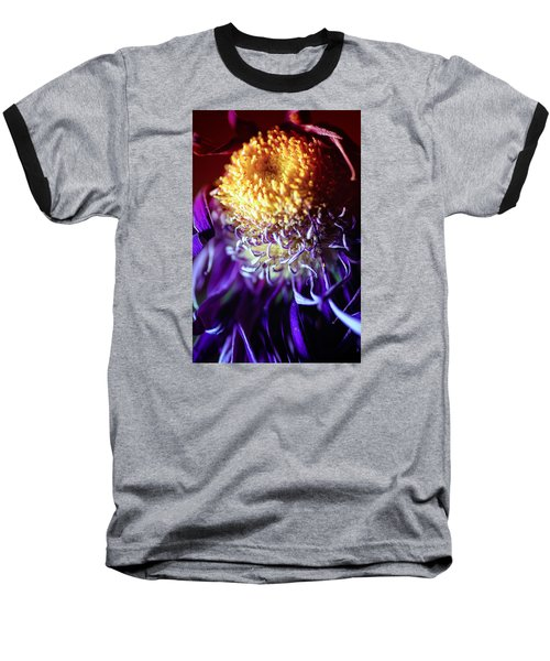 Dying Purple Chrysanthemum Flower Background Baseball T-Shirt by John Williams