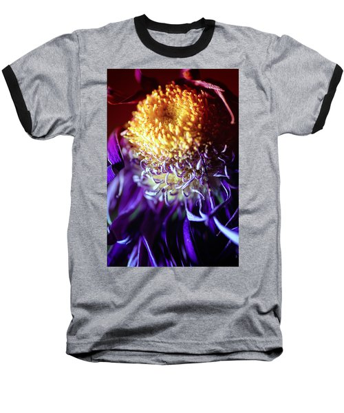 Dying Purple Chrysanthemum Flower Background Baseball T-Shirt