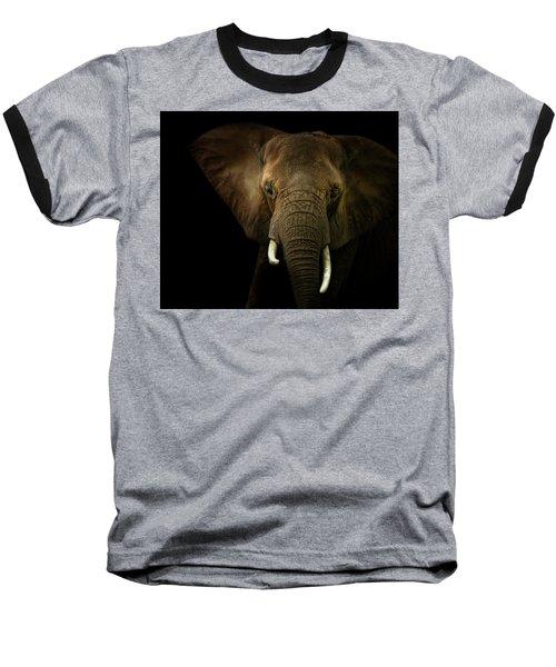 Elephant Against Black Background Baseball T-Shirt by James Larkin