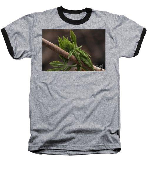Emergence #2 Baseball T-Shirt