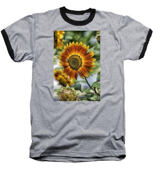 End Of Sunflower Season Baseball T-Shirt
