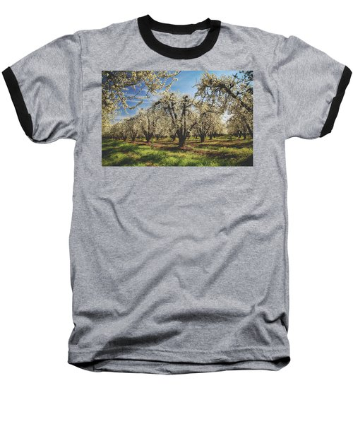 Baseball T-Shirt featuring the photograph Everything Is New Again by Laurie Search