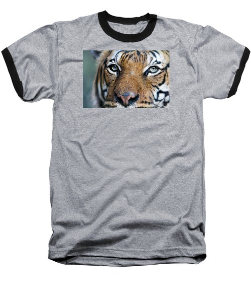 Eye Of The Tiger Baseball T-Shirt