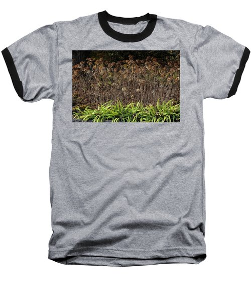 Baseball T-Shirt featuring the photograph Fall Contrasts by Deborah  Crew-Johnson