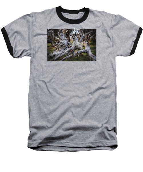 Fallen From Grace Baseball T-Shirt by Mark Lucey