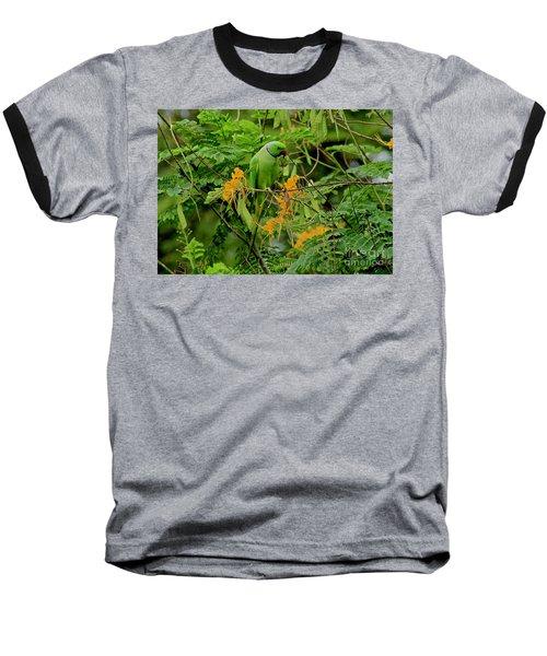 Feeding Baseball T-Shirt