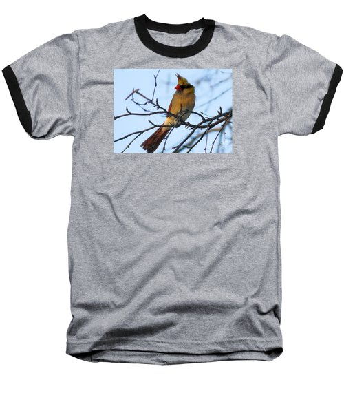 Baseball T-Shirt featuring the photograph Female Northern Cardinal by Ricky L Jones