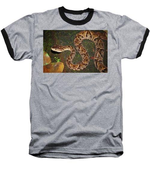 Baseball T-Shirt featuring the photograph Fer-de-lance, Bothrops Asper by Breck Bartholomew