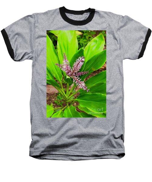 Flowering Ti Plant Baseball T-Shirt