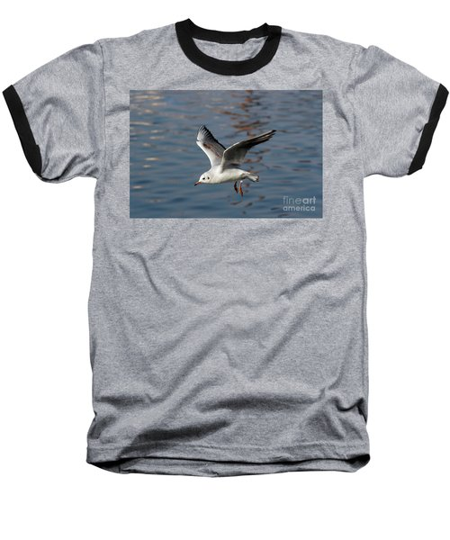 Flying Gull Baseball T-Shirt