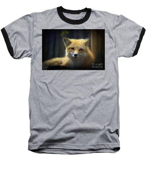 Baseball T-Shirt featuring the photograph Fox by Lisa L Silva