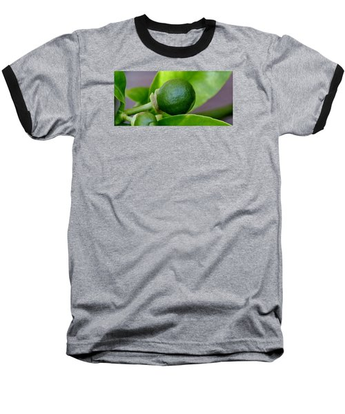 Baseball T-Shirt featuring the photograph Gapefruit by Werner Lehmann