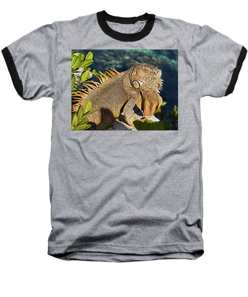 Giant Iguana Baseball T-Shirt