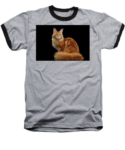 Ginger Maine Coon Cat Isolated On Black Background Baseball T-Shirt