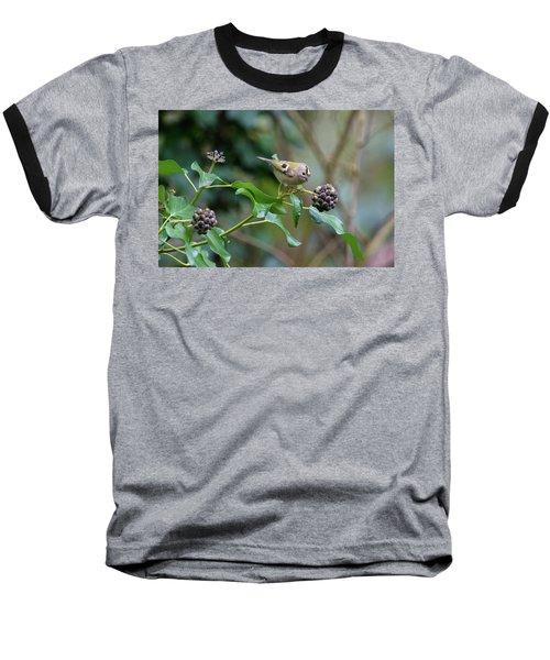 Goldcrest Baseball T-Shirt by Matt Malloy