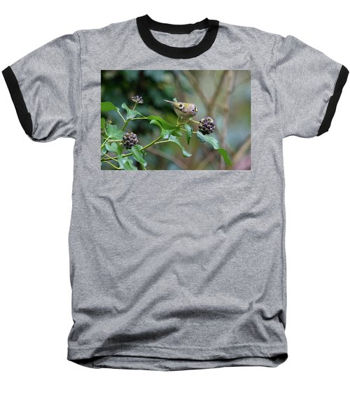 Goldcrest Baseball T-Shirt