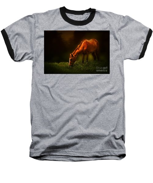 Grazing Baseball T-Shirt by Charuhas Images