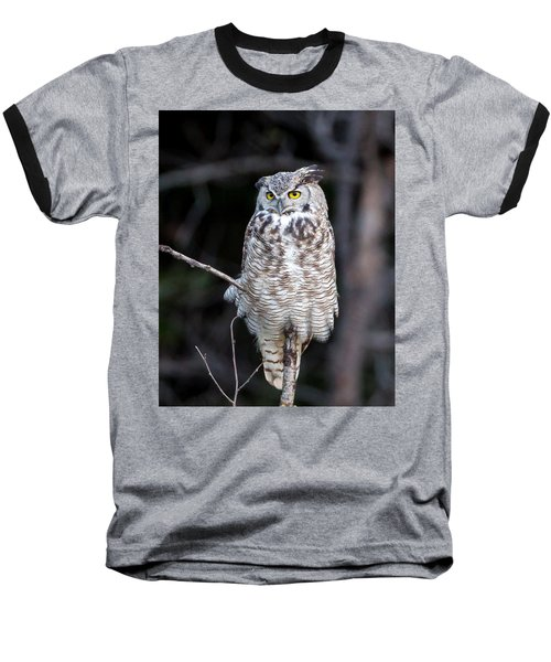 Great Horned Owl  Baseball T-Shirt by Jack Bell